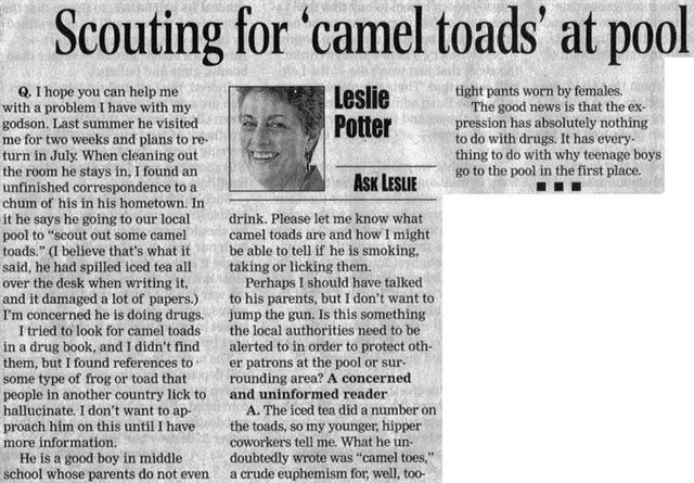 cameltoads.jpeg
