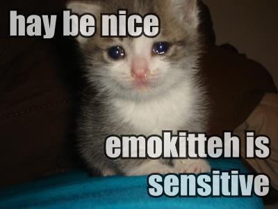 hay-be-nice-emokitteh-is-sensitive.jpg