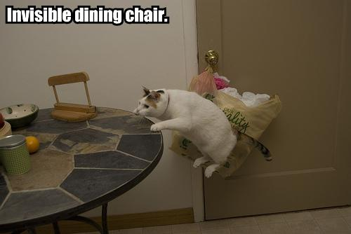 invisible-dining-chair.jpg