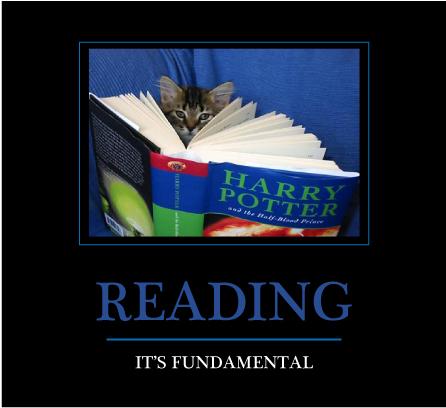 readingcat.jpg